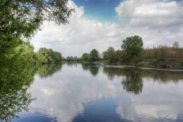 Lo specchio del fiume Oglio, foto di Pierangelo Lusvardi